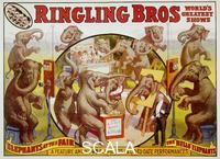 ******** Poster of the Ringling Bros. Circus: 'The Hallo Elephants'