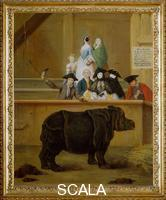 Longhi, Pietro (1702-1785) The Rhinoceros