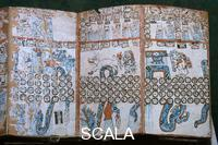Maya art Maya codex with Quetzalcoatl god