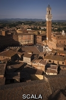******** A view of the Piazza del Campo and Torre del Mangia and terracotta roofs of Siena from the Museo dell' Opera. Siena, Tuscany, Italy.