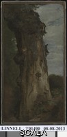 Linnell, John (1792-1882) Study of a Tree ('Study from Nature'). 1806