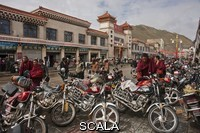 ******** Tibetan yartsa gunbu harvesters arrive at Serxu via motorcycles. Serxu, Sichuan Province, China.