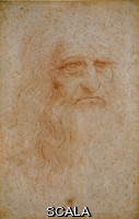 Leonardo da Vinci (1452-1519) Self-Portrait no. 15571