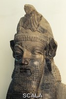 ******** Head of Lamassu, winged bull with a human face, from the Tripylon (triple gate) of Persepolis, Iran.