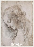Leonardo da Vinci (1452-1519) Head of woman no. 428 E