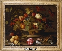 ******** Ast, Balthasar van der (c.1593-1657). A Still Life of Grapes, Apples, a Peach and Plums in a Basket with Lily of the Valley, a Carnation, Fruit and Shells on a Ledge. Balthasar van der Ast (c.1593-1657). Oil on panel, 38.7 x 49cm.