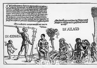 ******** The Kunig of Gutzin / King of Cochin by Georg Glockendon [- 1514] Section 5: Natives in Guinea and Algoa. 1511