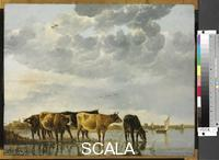 Cuyp, Aelbert (1620-1691) Cows in a River
